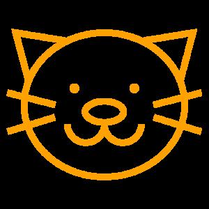 06_pet_orange