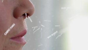 Close-up Victoria nose_1